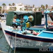 Fiskerbåde i havn